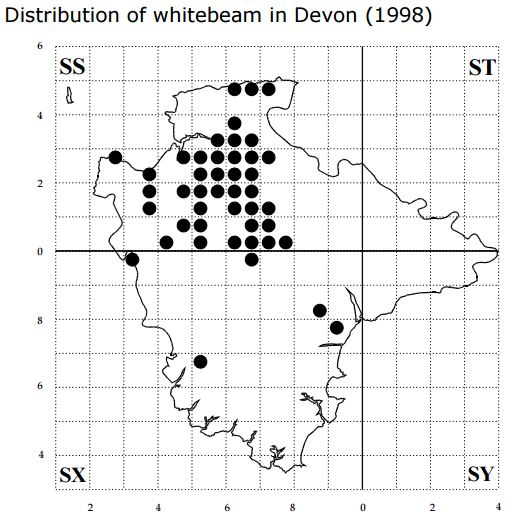 This map is taken from the biodiversity action plan for the Devon whitebeam (Sorbus devoniensis).