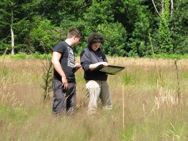 Botanical surveyors at work
