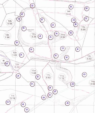A section of Rob Macklin's survey showing how many robins, blackbirds, dunnocks and song thrushes nest around Wooston Hillfort (each grid square is 100m)