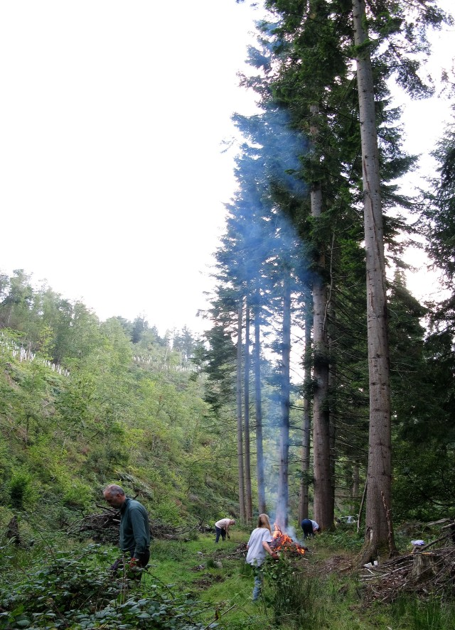 Ken, Hywel and Christine – new volunteers at work, clearing a path beneath the grand fir trees